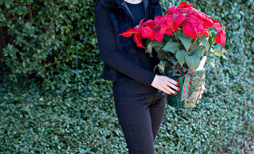 woman dressed in black holding poinsettia example of business gifts